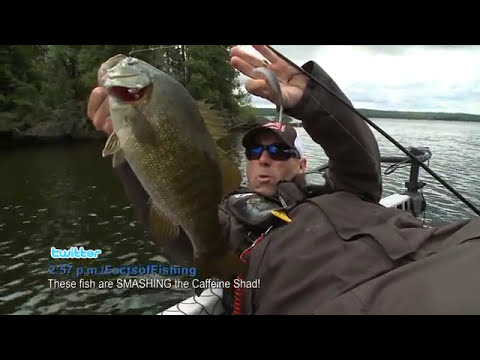 Throwing Braided Line When Fishing a Strike King Caffeine Shad - Facts of Fishing THE SHOW