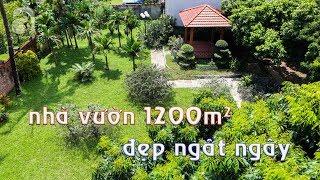 Ngôi nhà vườn rộng 1200m² đẹp ngất ngây, lúc lỉu trái cây ngay ở ngoại thành Hà Nội | Zovila