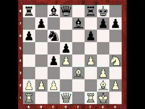 Short - Polgar (2001) (chessmusic video)