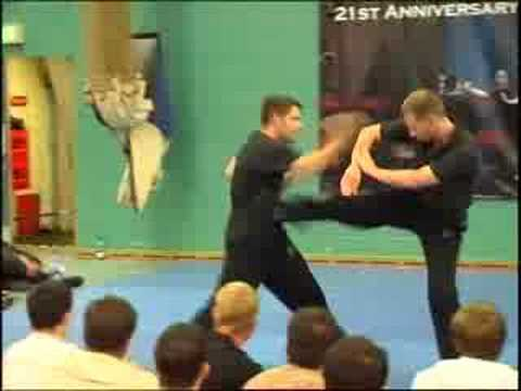 Wing Chun Techniques Image 1