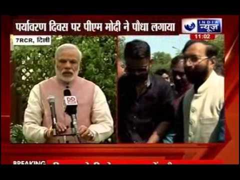 World Environment Day 2015: PM Modi plants Kadam tree sapling