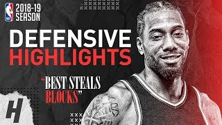 Kawhi Leonard BEST Defensive Highlights from 2018-19 NBA Season & Playoffs!