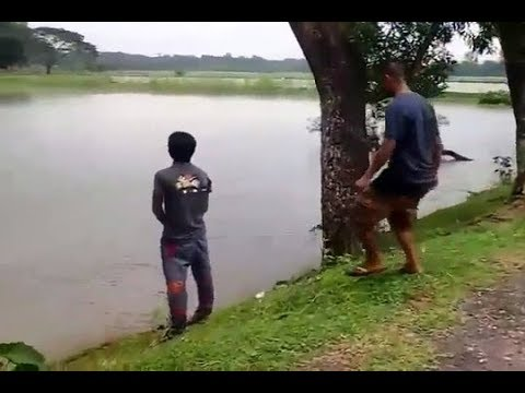 Funny videos compilation June 2018|June monthly funny videos compilation|pakistani funny videos 2018