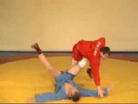 basic techniques of Sambo техника самбо Image 1