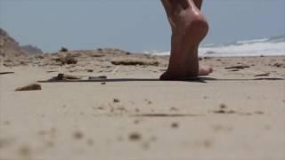 download lagu Beach : Background   For Website gratis