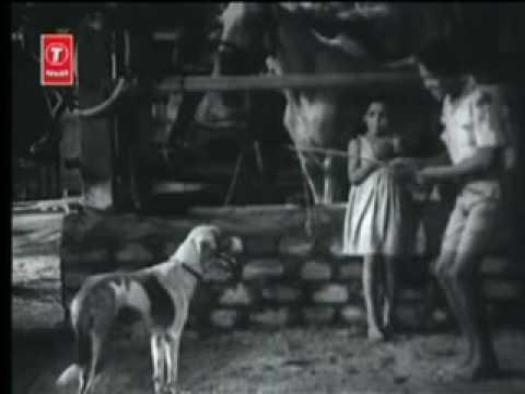 Hum Bhi Insaan Hain(1948)- Kis Ki Gali Mein Raa (Shamshad Begum...