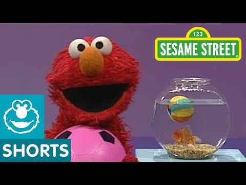 Sesame Street: Elmos World: Play Ball!