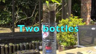 HOW TO GROW PLANTS IN BOTTLES