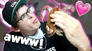 Crab Love - Bad Unboxing Fan Mail