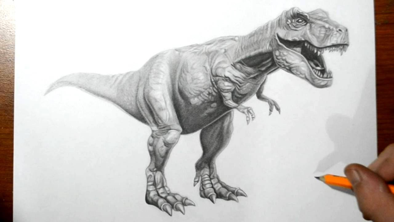 Awesome t Rex Drawings How to Draw a T-rex Dinosaur