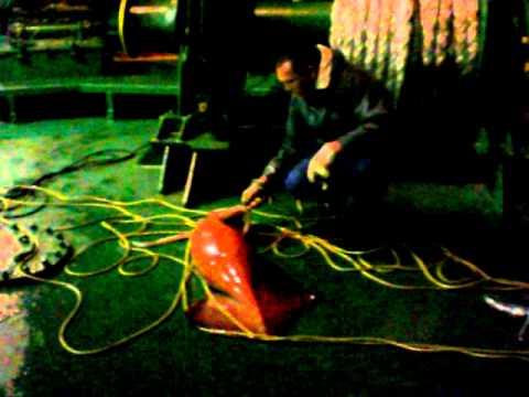 борьба рыбаков с гигантским кальмаром видео