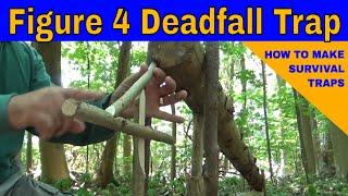 Figure Of Four DeadFall Trap   Log Trap With Setup Variation   Bushcraft, Prepping, Survival Skills