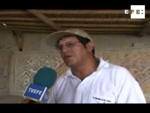 La momia peruana será expuesta al público