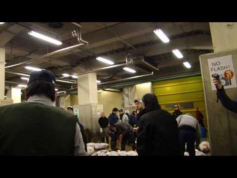 Tsukiji Fish Market Tokyo (Tuna Auction)