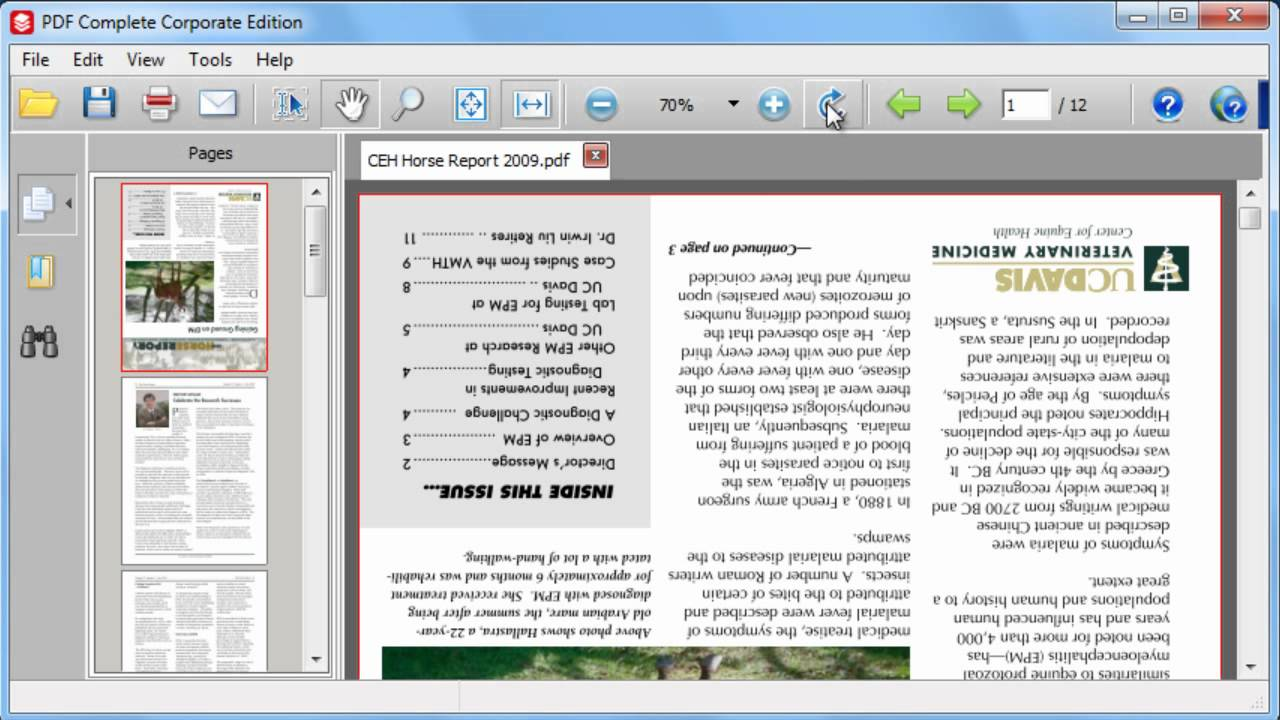 how to make a singular page rotate in word