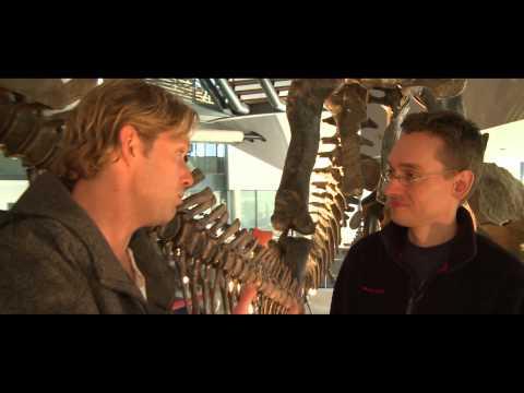 Jurassic Park | Veronica Film