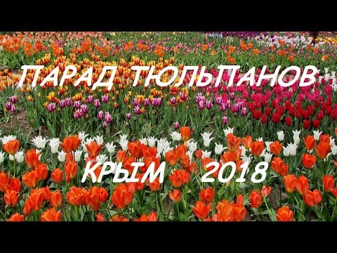Парад тюльпанов, Крым 2018