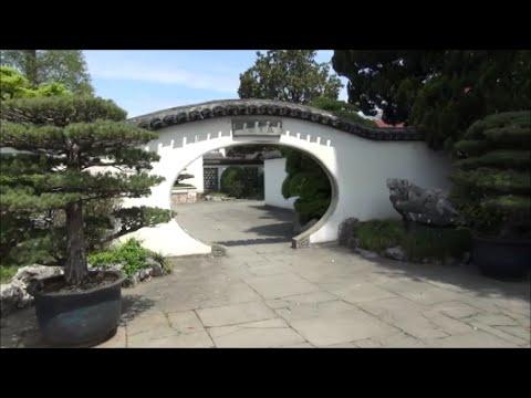 Bonsai collection in Shanghai Botanical Gardens,