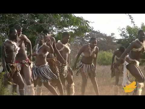 Zuid-Afrika: Zulu Dans Hluhluwe 1/3