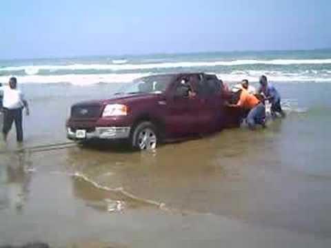 Rescatando Lobo en Tuxpan