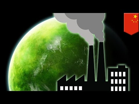 Climate change: Rising CO2 levels has led to a greener planet Earth, says new study - TomoNews
