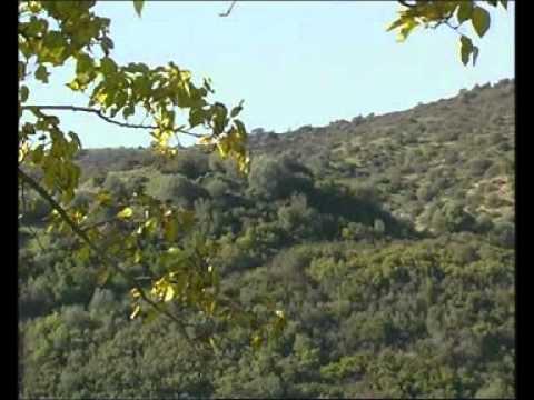 Cementerio de Lora Del Rio Lora Del Río Video