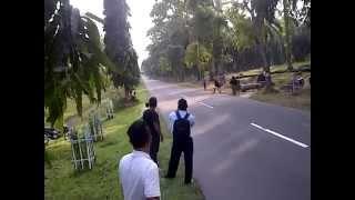 Balap Liar Siantar simpang 2 ( ZAKUEL WARWER VS AMAD KONTOL)