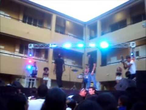 Presentacion de Pingo la hoja  el colegio CENSFE PARTE 3