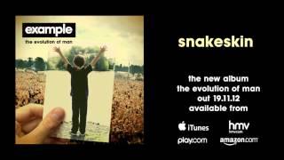 Watch Example Snakeskin video