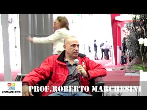 ZOOMARK2013 – RadioBau incontra Roberto Marchesini