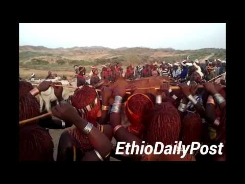 Ethiopia's Hamer Tribe Bull Jumping
