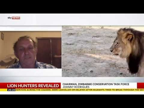 How Cecil The Lion Was Killed