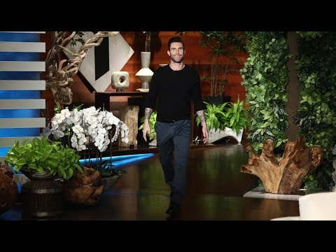 Adam Levine Reveals Gender of Baby Number Two