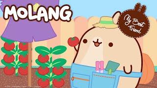 Molang Compilation #7 - Summer Compilation - #MyBestFriend - Cartoon for kids