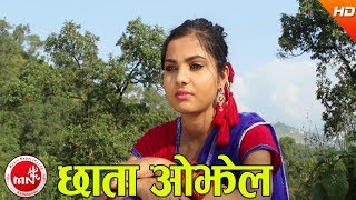 download lagu New Nepali Lok Geet 2074  Chhata Ojhel - gratis