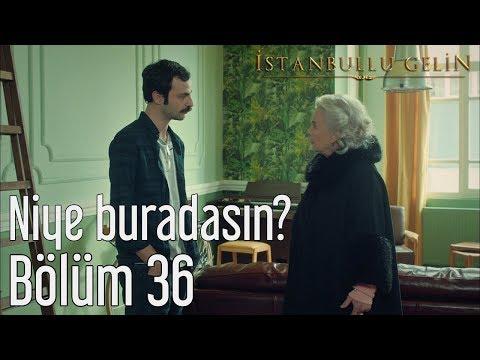 İstanbullu Gelin 36. Bölüm - Niye Buradasın?