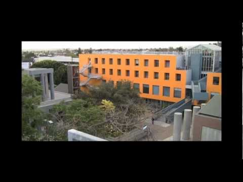 Loyola Law School - A Student Perspective