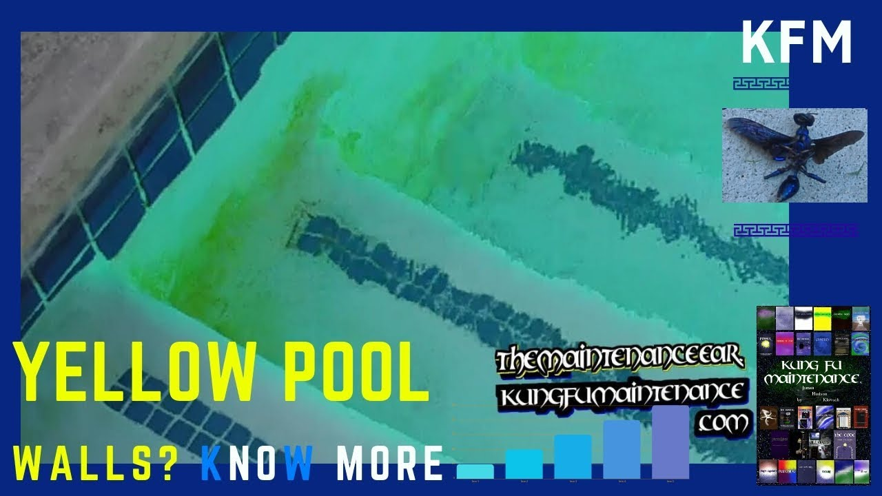 How To Get Rid Of Yellow Mustard Algae In Swimming Pools And Spas Youtube