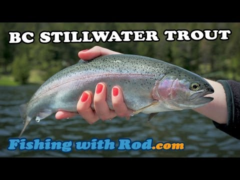 Fishing with Rod: BC Stillwater Trout