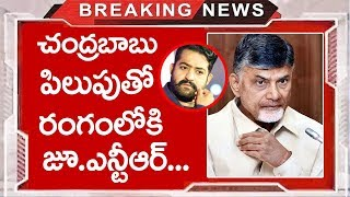 Jr NTR Political Entry Into the Chandra Babu Suggesions |Jr NTR | TTM
