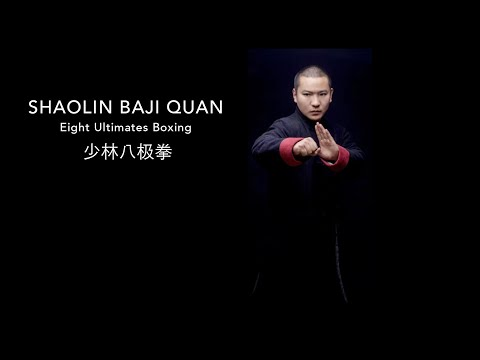 shaolin Baji quan Image 1