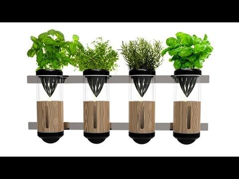 Clique e veja o vídeo Curso Hidroponia: O Cultivo sem Solo - Espécies de Plantas