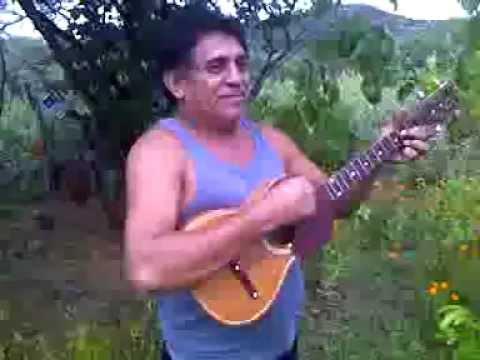 Pablo Alirio Diaz. CARORA. Balsamito.3gp