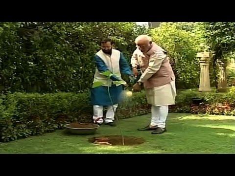 PM Modi plants sapling at 7 RCR on World Environment Day