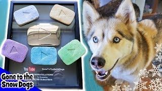 YouTube Play Button Cookies for Dogs | DIY Dog Treats Recipe 100