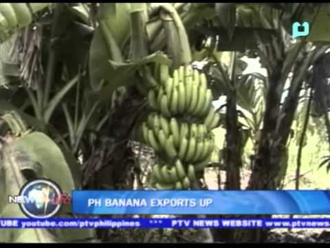 PH banana exports up