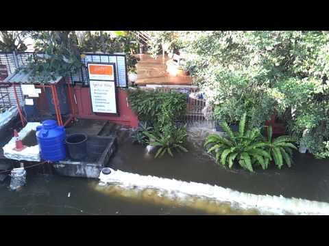 Bangkok Floods 2011 – The Water Bar 28 Oct.