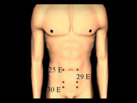Mapas de Puntos del Manual de Acupuntura China Acupuncture points 中国针灸