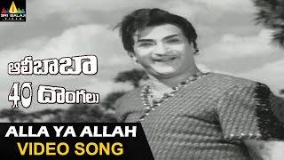 Alibaba 40 Donaglu Songs | Alla Ya Alla Video Song | NTR, Jayalalitha | Sri Balaji Video