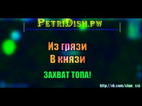 PETRIDISH.PW | ИЗ ГРЯЗИ В КНЯЗИ | ЗАХВАТ ТОПА!